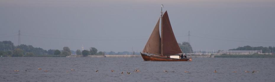 Eemmeer---Vogelkijkhut-396